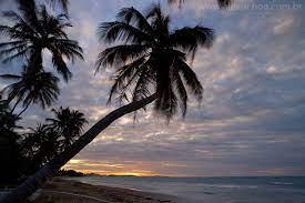 A Praia é nossa